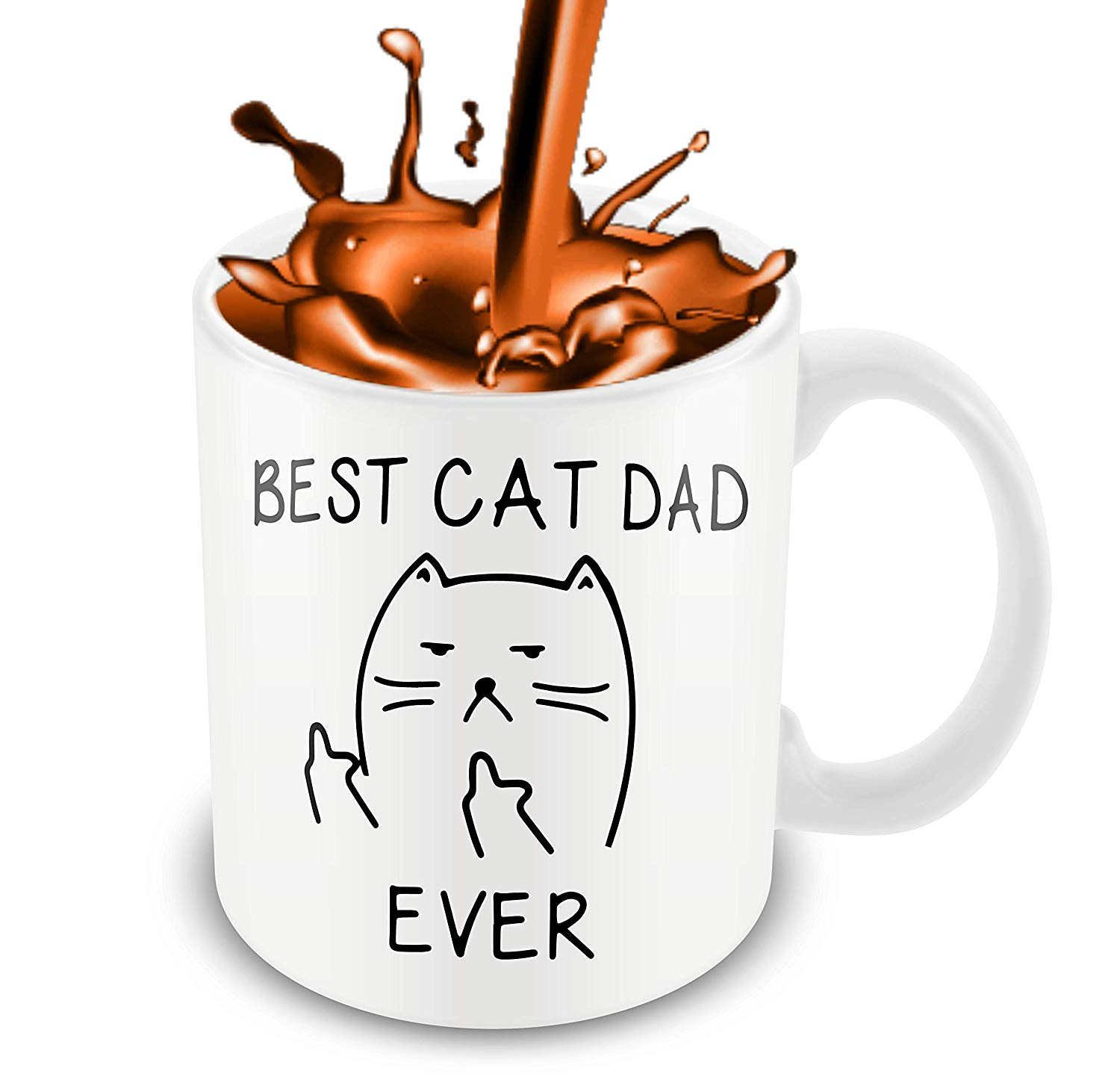 Best Cat Dad EverFunny Cat Lover Gifts Funny Middle Finger Coffee MugUnique Birthday Gift For Dad B079FZ3DHS