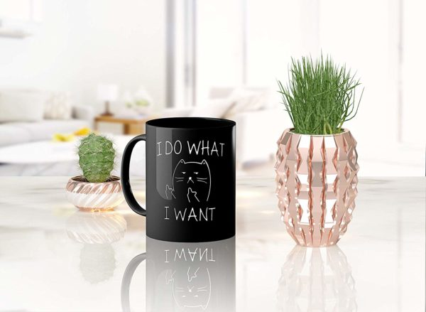 I Do What I Want Funny Coffee Mug Cat Middle Finger 11 Oz Birthday Gift For Men Women Him Or Her B079FSTVY3 5